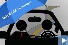 Video-Images-INS101-UM-UIM