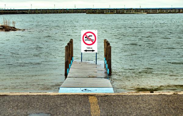 Electric shock swim safet